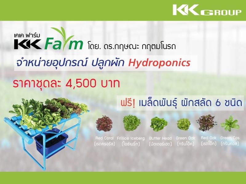 อุปกรณ์ปลูกผัก Hydroponics